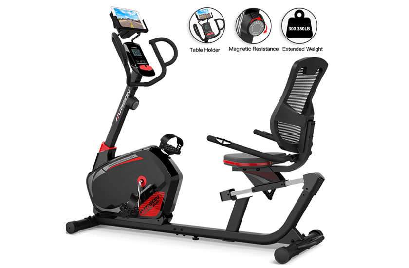 HARISON Recumbent Exercise Bike